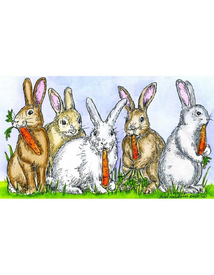 Bunch Of Bunnies With Carrots - NN10752