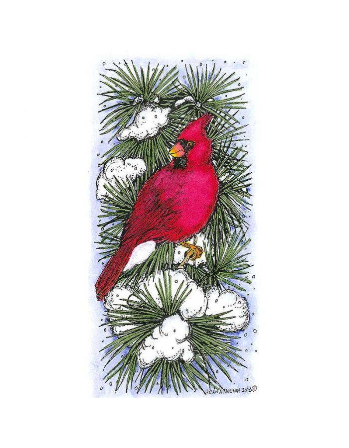 Cardinal on Snowy Pine - O6778