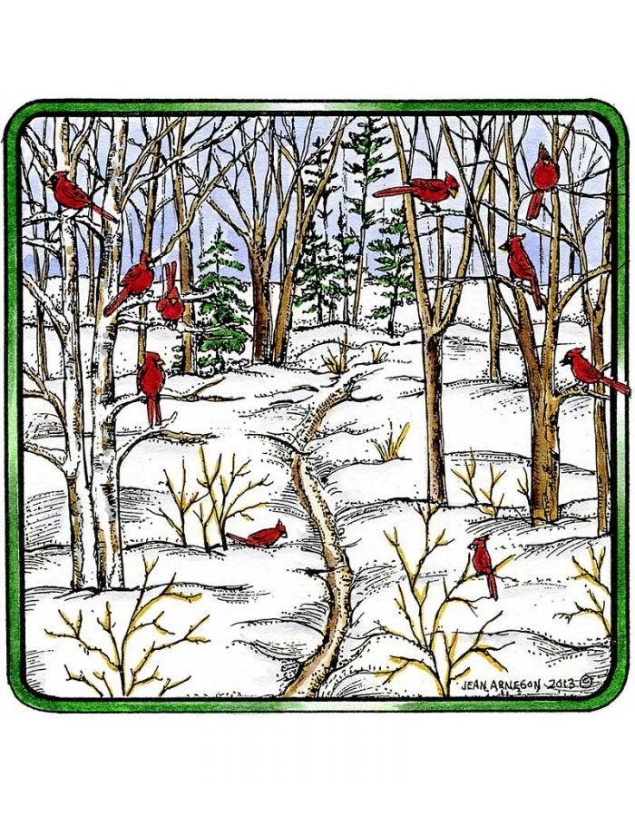 Cardinals On Bare Branched Trees - PP9317
