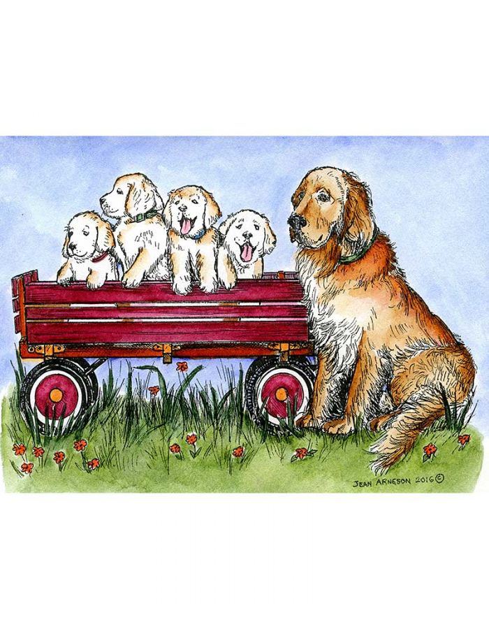 Goldie and Puppies in Wagon - P9989