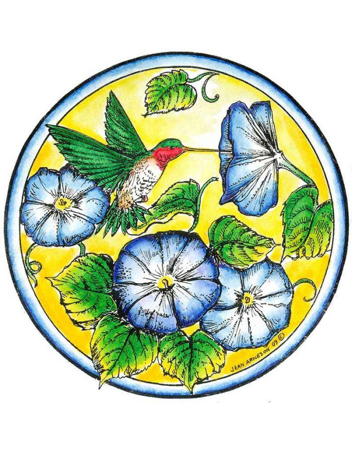 Hummingbird and Morning Glory Circle - PP6821