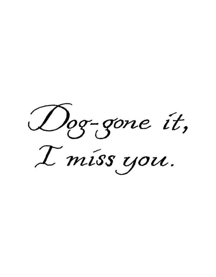 Dog Gone It, I Miss You - D9065