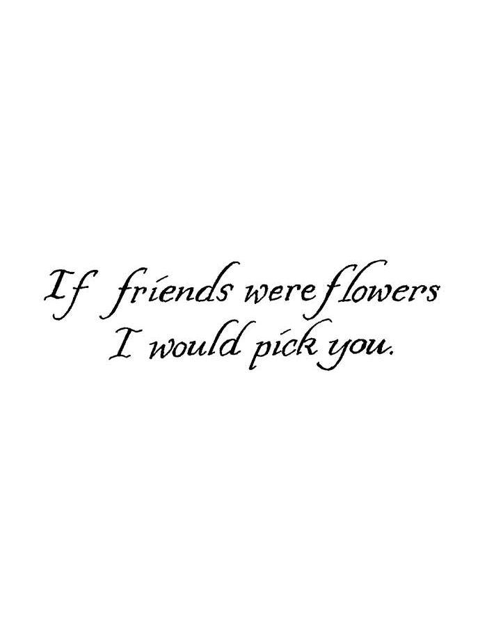 If Friends Were Flowers - D8991