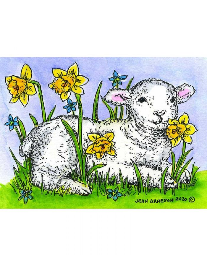 Lamb and Daffodils - M10747