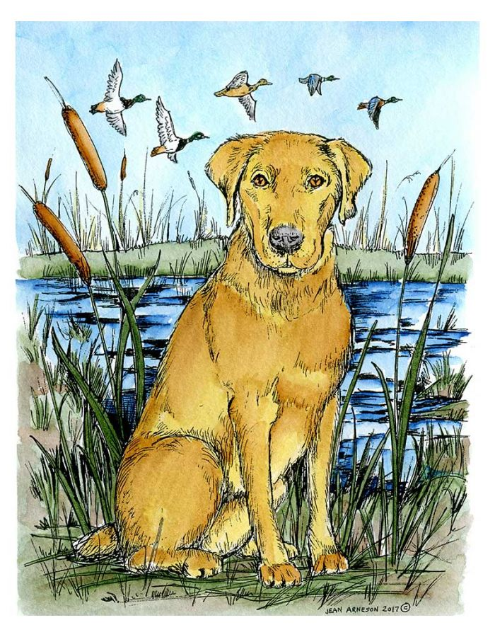 Maddox's Hunting Dog - P10211