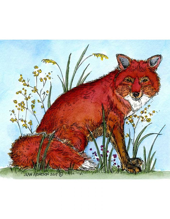 Matthew's Fox In Weeds - M10217
