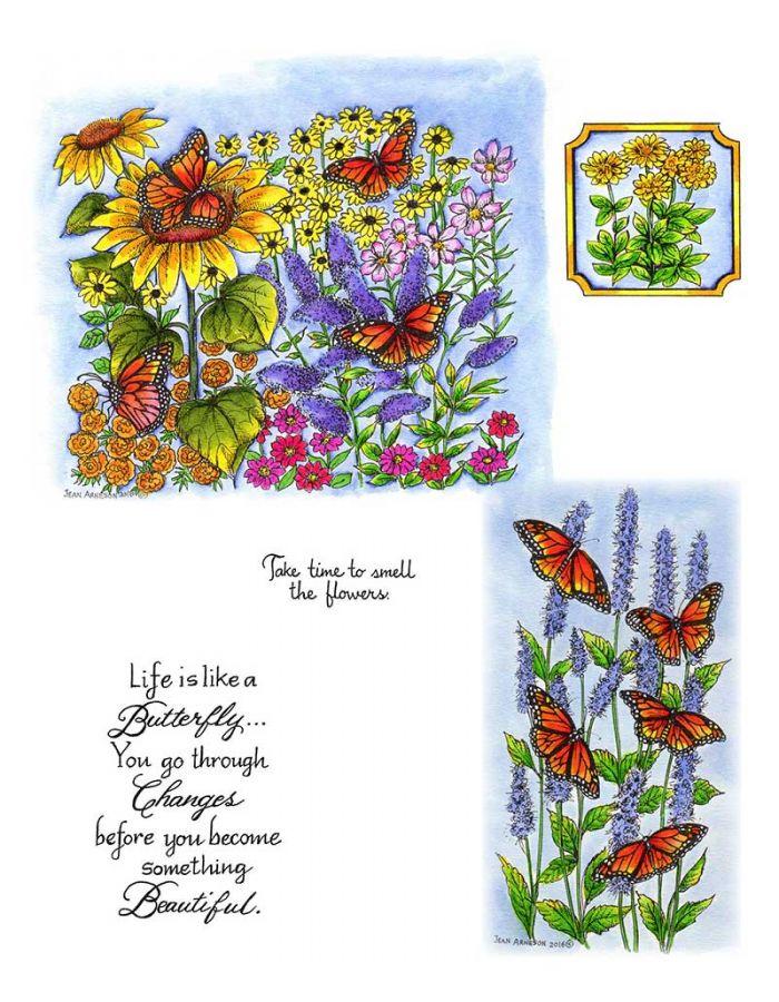 Monarchs in Butterfly Garden - NO-015