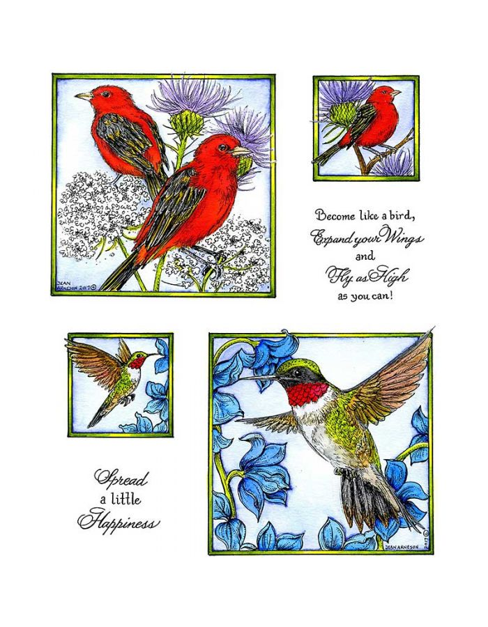 Tanager & Humming Bird - NO-052