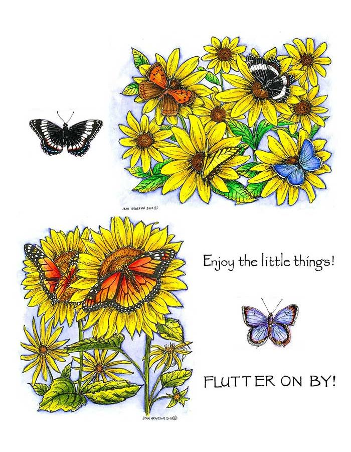 Brown-Eyed Susan with Butterflies & Sunflower with Monarchs - NO-096