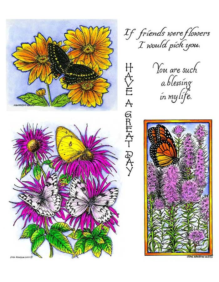 Bee Balm with Butterflies & Black Swallowtail on Coreopsis - NO-097