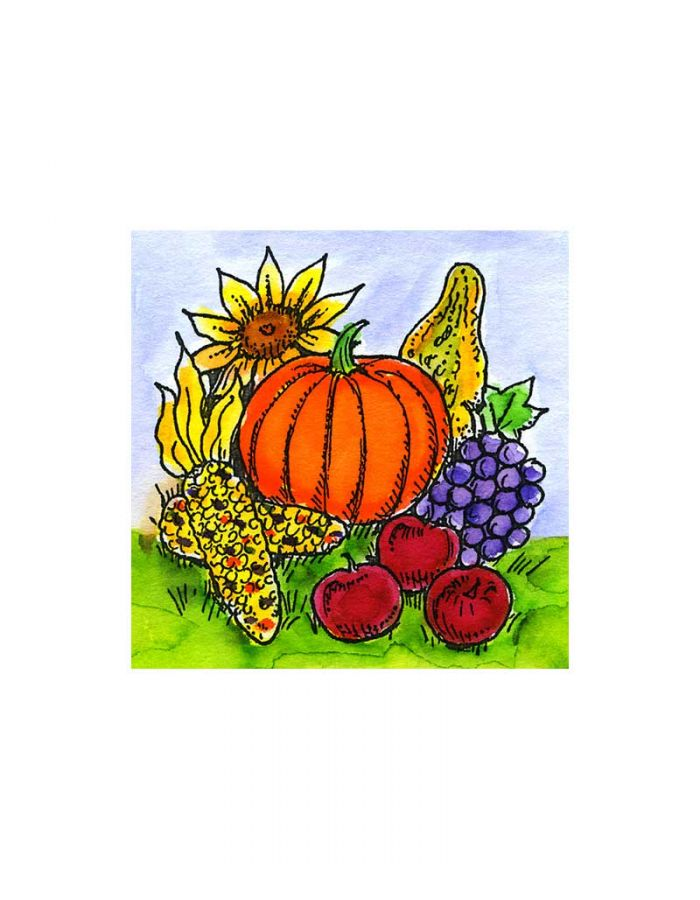Pumpkin, Sunflower, Gourds and Corn - C10491