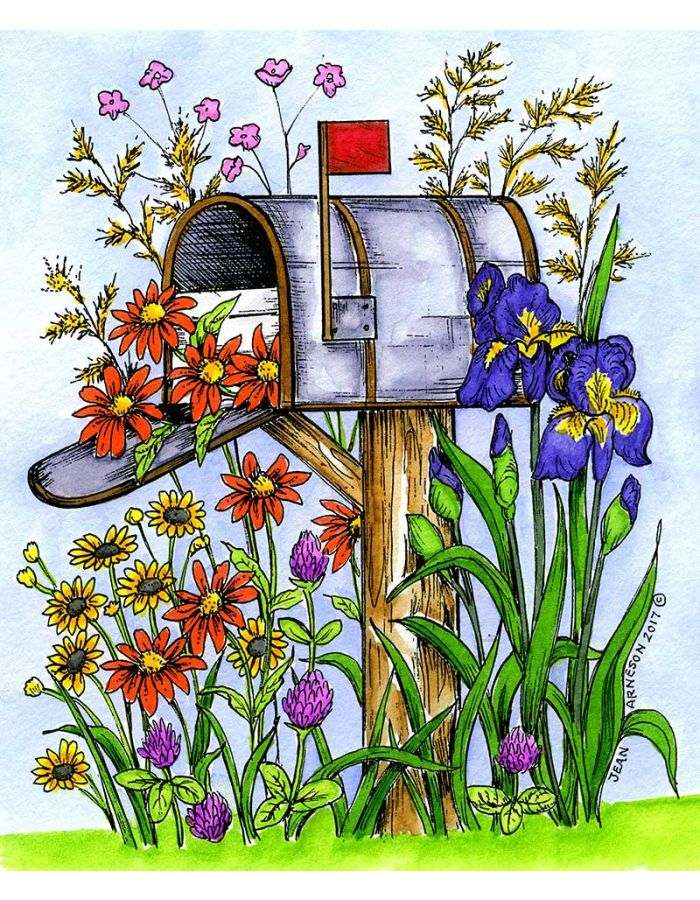 Spring Mailbox With Irises and Daisies - P10242