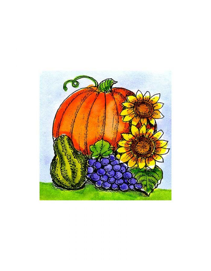 Sunflower, Grapes and Pumpkin - C10301