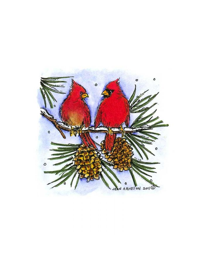 Two Cardinals on Pine Branch - CC8301