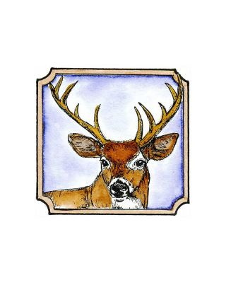 Buck In Notched Frame - CC8533
