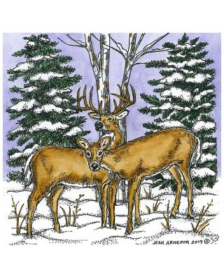 Deer Pair and Spruce - PP10714