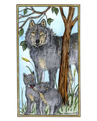 Isabelle's Wolf Family - NN10215