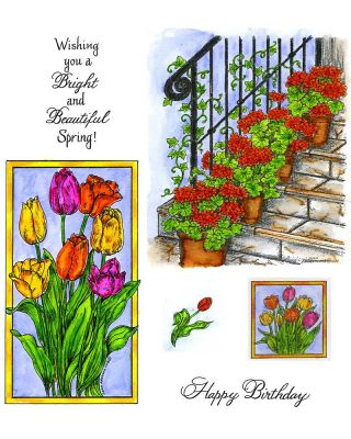 Geraniums & Framed Tulips - NO-001