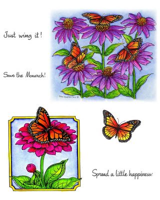 Monarchs & Coneflower - NO-014