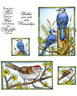 Blue Jay & Sparrow - NO-051