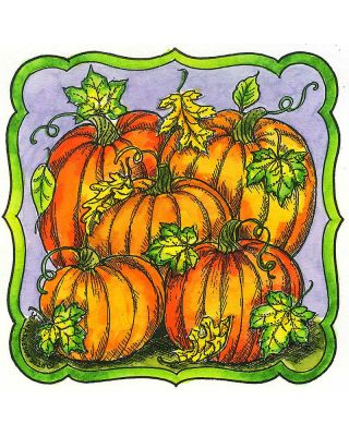 Pumpkins in Curved Square Frame - PP10815