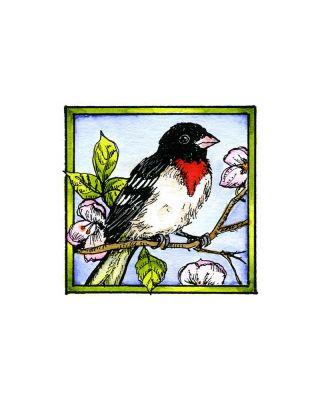 Red Breasted Grosbeak - CC10185