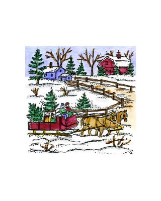 Small Bring Home The Tree Sleigh - CC10877