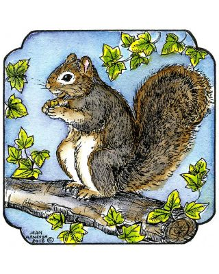 Squirrel In Curved Frame - MM9036