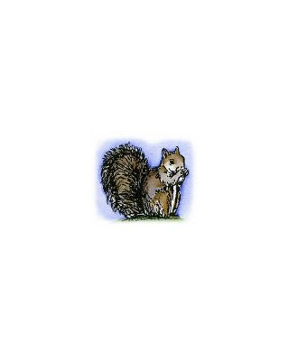 Tiny Squirrel - A8894