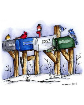 Winter Mailboxes With Winter Birds - P8869