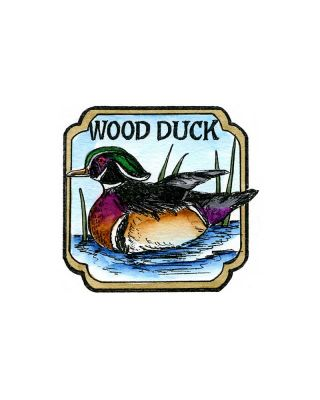 Wood Duck in Curved Frame - CC10208