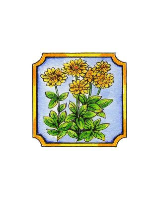 Zinnia in Notched Frame - CC9930